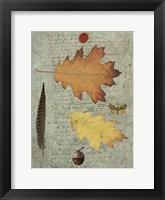 Autumn Leaf III Framed Print