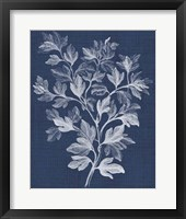 Framed Foliage Chintz I