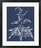 Framed Foliage Chintz II