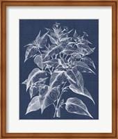 Framed Foliage Chintz III