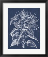 Framed Foliage Chintz III
