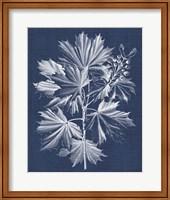 Framed Foliage Chintz V