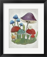 Framed Mushroom Collection II