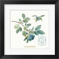Framed My Greenhouse Fruit II
