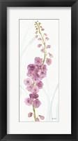 Framed Rainbow Seeds Flowers VII