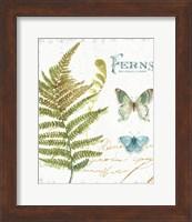 Framed My Greenhouse Botanical III