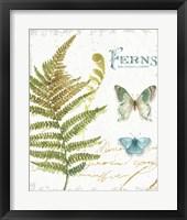 My Greenhouse Botanical III Framed Print