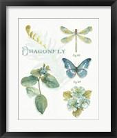 My Greenhouse Botanical II Framed Print
