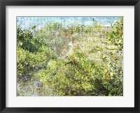 Framed Beach 4