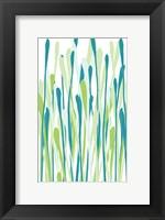 Framed Grasses II