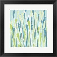 Framed Grasses III