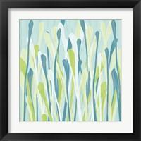 Framed Grasses III