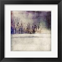 Framed Winter Trees