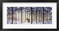Framed Winter Scene Man With Tree