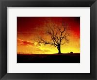 Framed Fire In The Sky