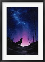 Framed Starry Nights