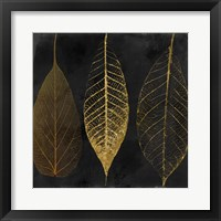 Framed Fallen Gold I