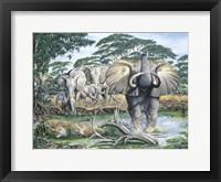 Framed Unrest On The Serengeti