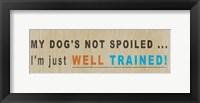 Framed Dog Owns You II