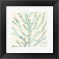 Framed Coral Vision on Cream I