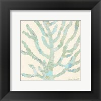 Framed Coral Vision on Cream II