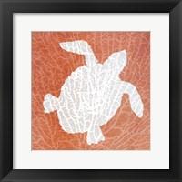 Framed Sealife on Coral III