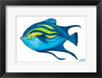 Framed Fishy II