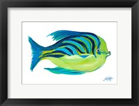 Framed Fishy I