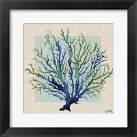 Framed Indigo Coral on Cream I