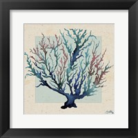 Framed Indigo Coral on Cream II