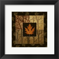 Framed Foliage III