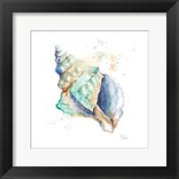 Framed Blue Shell Square