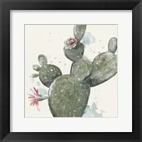 Framed Natural Cactus in Bloom