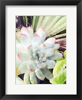 Framed Watercolor Green Succulent