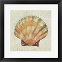 Coastal Treasures I Framed Print