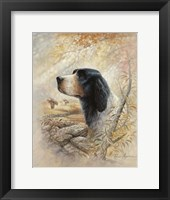 Framed English Pointer