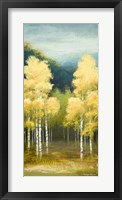 Framed Birchwood II