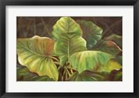 Framed Tropical Green