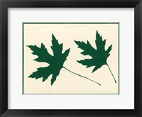 Framed Green Leaves