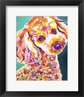 Framed Poodle - Curly
