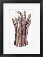 Framed Asparagus