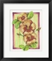 Framed Pansies