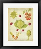 Framed Les Beaux Legumes (The Beautiful Vegetables) Vintage