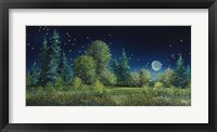 Framed Fireflies