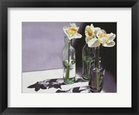 Framed Daffodil Study