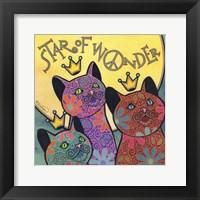 Framed Cat 5