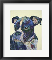 Framed Boxer Portrait