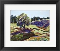 Framed Greengrass