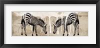 Framed Two Zebras