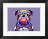 Framed Bulldog I